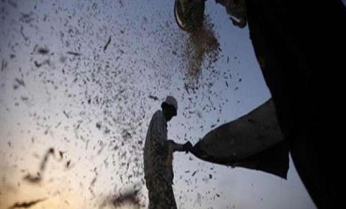 cabinet defers food security ordinance