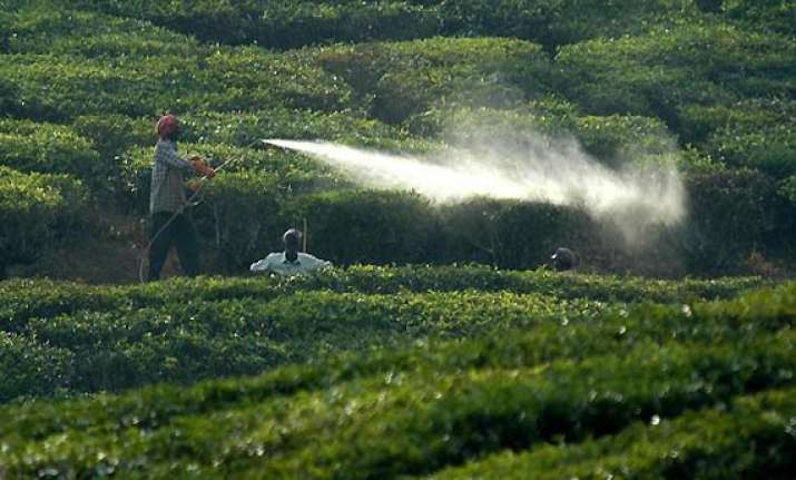 campaign against use of pesticides in bangalore
