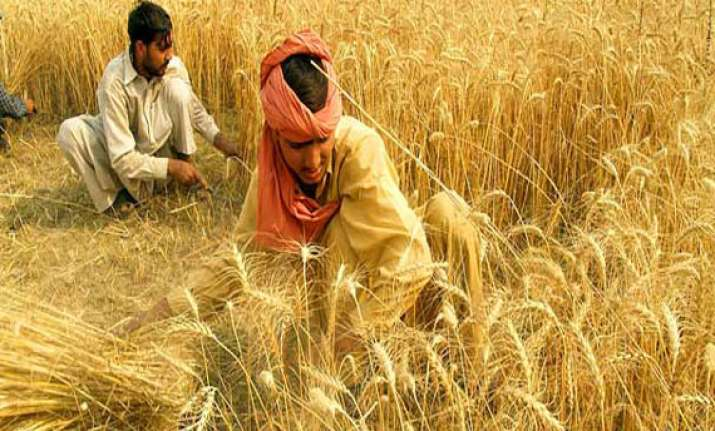 centre asks states to release 2.7 million tonnes of wheat