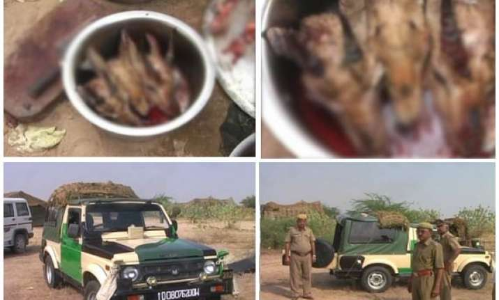 chinkaras found dead in army camp 5 armymen booked