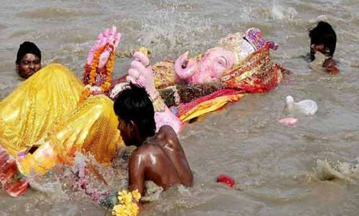 don t pollute yamuna on ganesh chaturthi devotees told