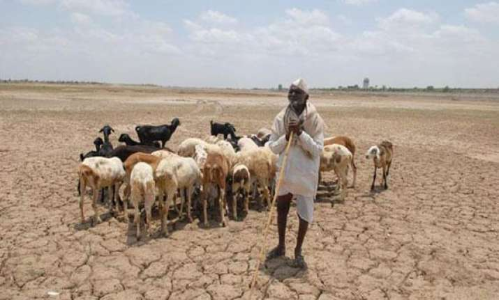 drought looms over rajasthan as 23 districts got deficit