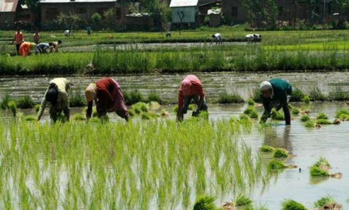 early monsoon beneficial for kharif crops