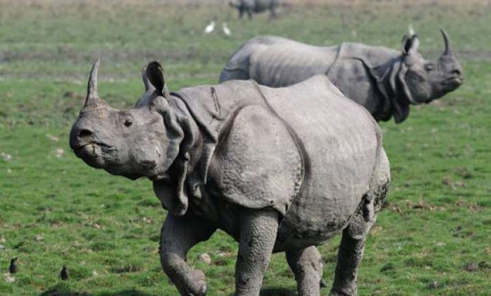 forest guards open fire at poachers in kaziranga