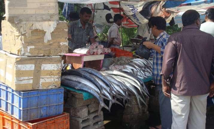 free namo fish to celebrate modi assuming office