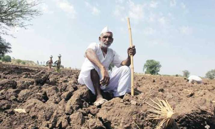1 000 farmer suicides in maharashtra in 2015 hc suggests
