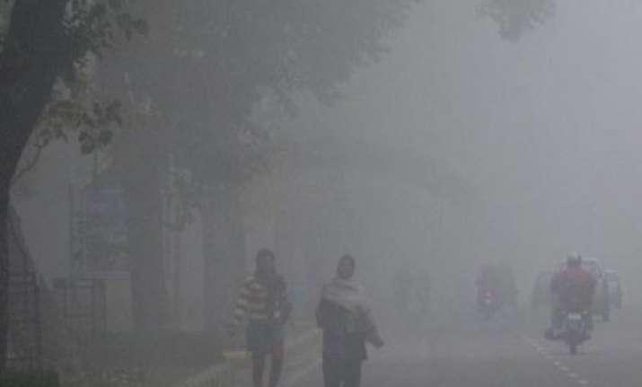 delhi witnesses season s coldest morning at 4.9 degrees