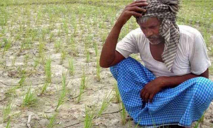 mahrashtra farmer suicides yavatmal collector summoned
