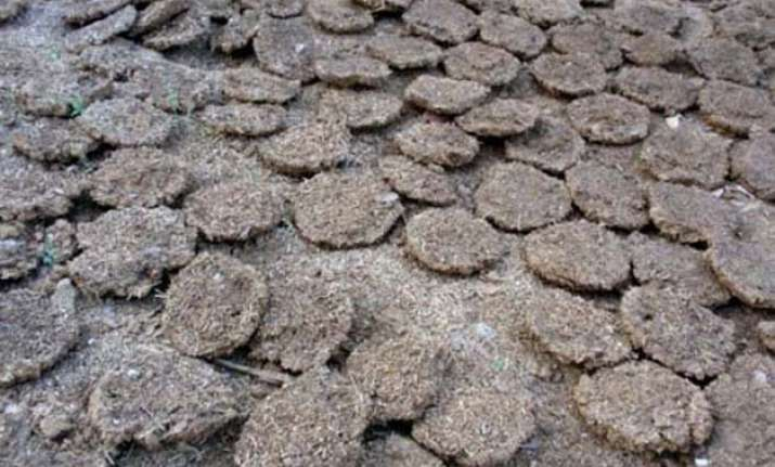 Burning Of Cow Dung Cakes Banned Near Taj Mahal India News India Tv