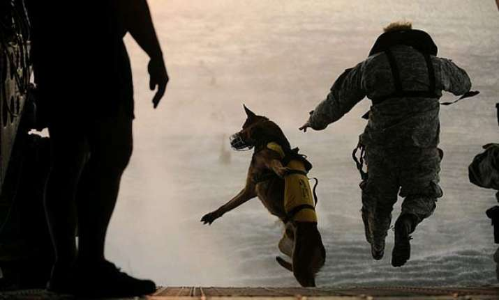 american canine officers in india for obama security
