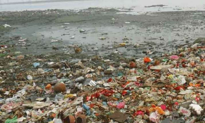 ngt seeks more information about tanneries on ganga banks
