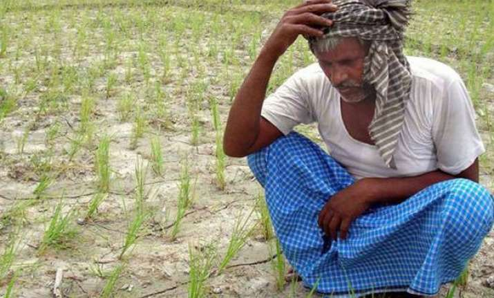 agriculture ministry informs supreme court that it can t