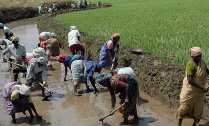 mnrega has helped revive agriculture sector study