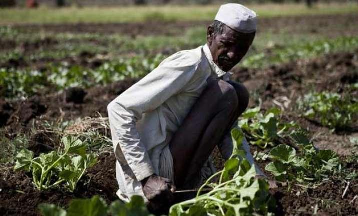 seven more farmers commit suicide in odisha