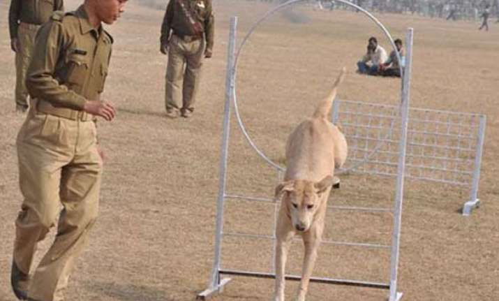 police dog crushed to death by truck in bihar 5 policemen