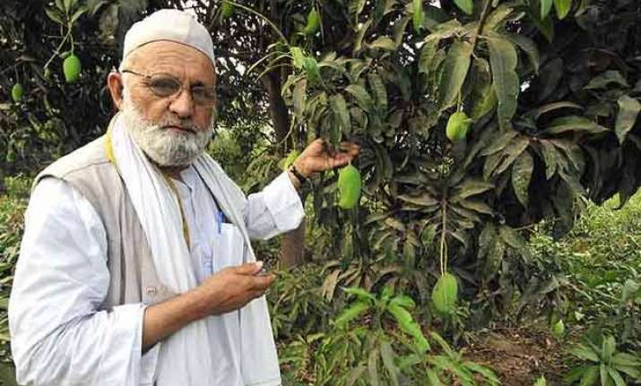 famous mango cultivator haji kalimullah comes out with a