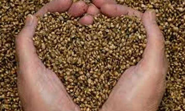 govt to provide free seeds to farmers in uttarakhand