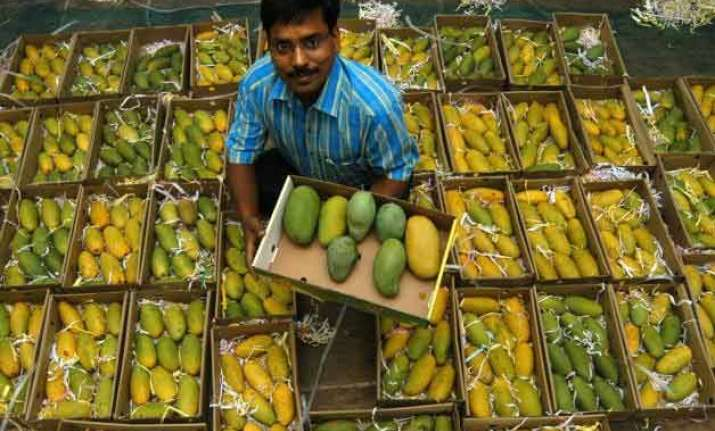 mango production in up may halve to 43 lakh tonnes assocham