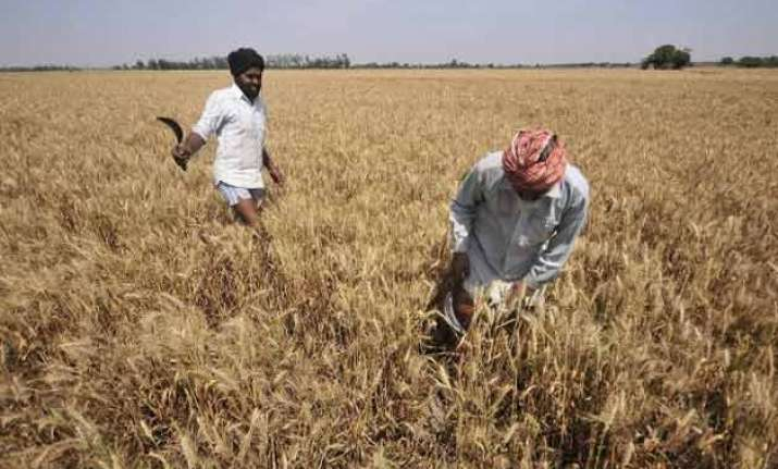 rajasthan 2 more farmers end lives 1 dies of shock due to