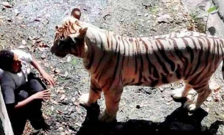 delhi zoo to have proper precautionary mechanisms