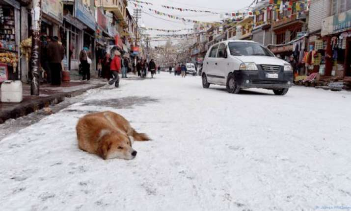 leh coldest at minus 17 srinagar shivers at minus 4.8