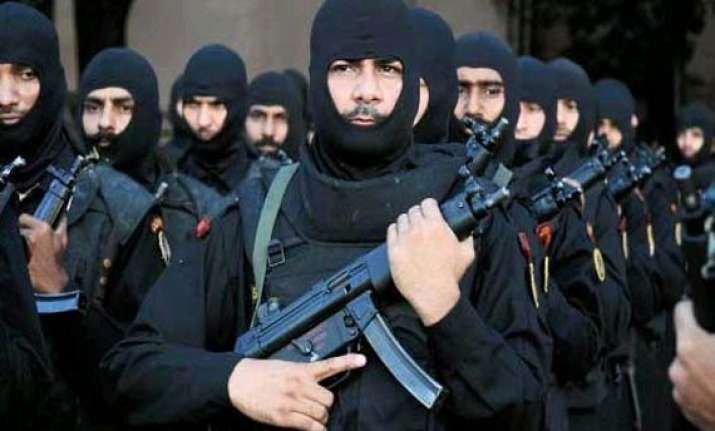 will revise procedures for counter hijack demo on planes nsg