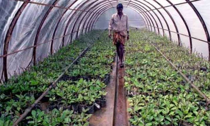what is the future of farming in india
