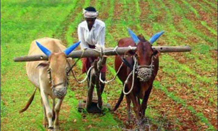 dodgy data farmer suicides drop 67 in 6 years