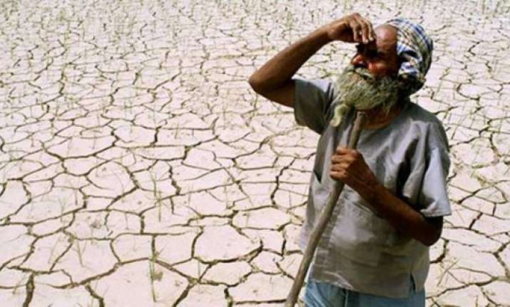 six farmers commit suicide in vidarbha