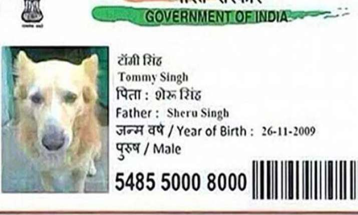 now a dog gets aadhar card