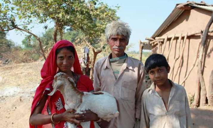 goats and more an anti poverty guide for narendra modi