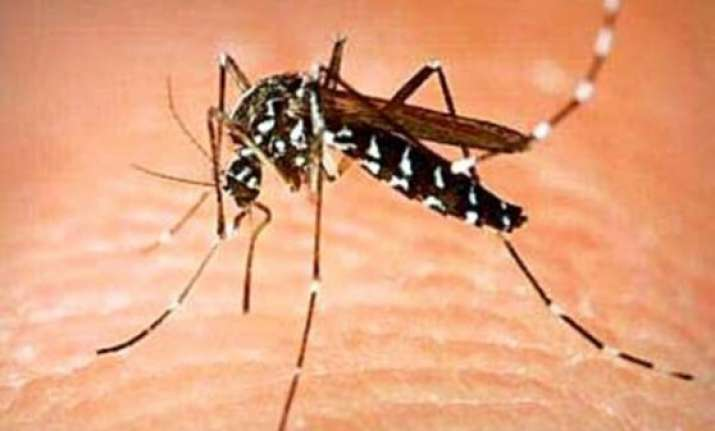 dengue claims its first victim in delhi this season