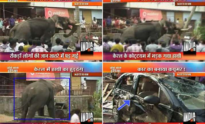 kerala aranmula temple elephant turns violent damages cars