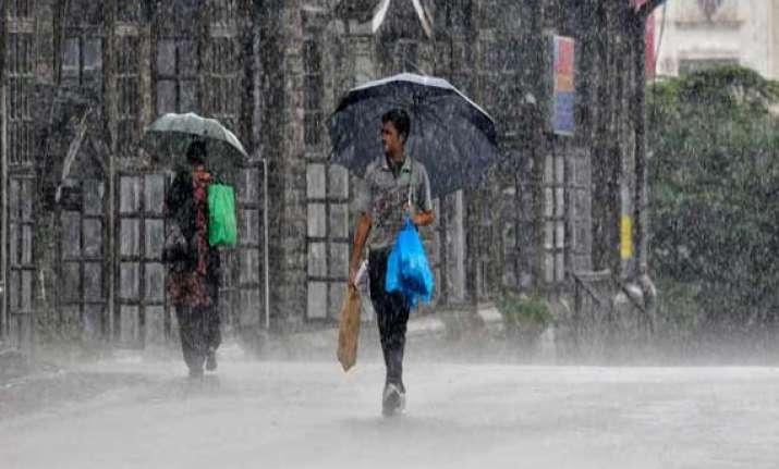 mahagenco shuts operations at chandrapur plant due to rains