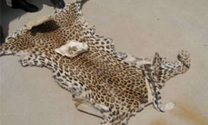 man held with leopard skins