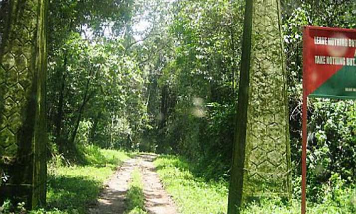 man walks 40km through forest with pregnant wife on