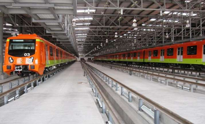 metro rail transplants chennai s grand old banyan tree