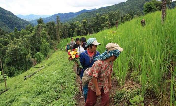 new farming scheme boosts mizoram s growth