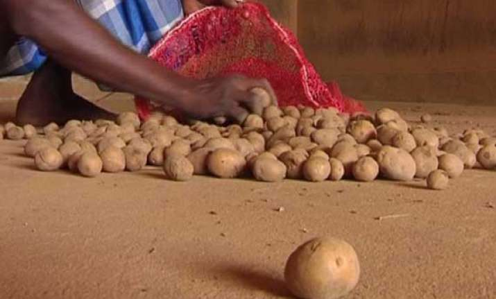 no potato crisis in odisha minister