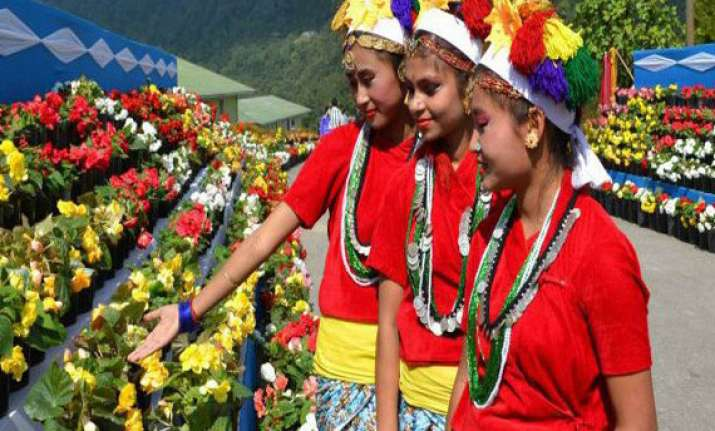 sikkim is lush with exotic flowers orchids