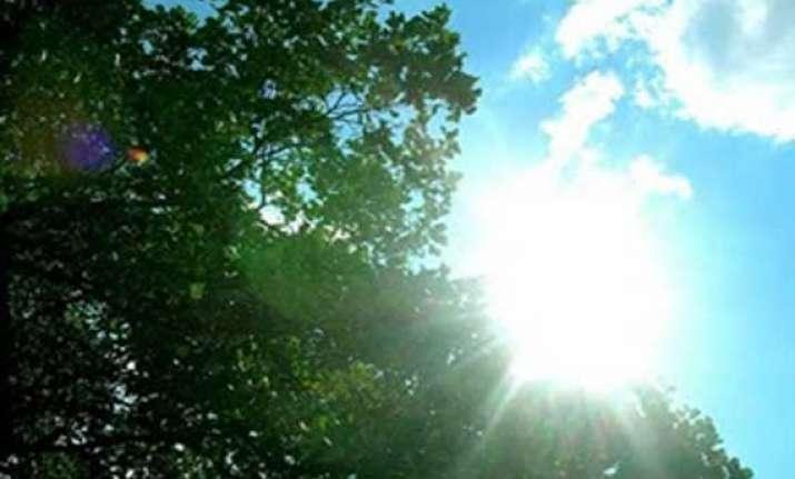 sunny day in delhi