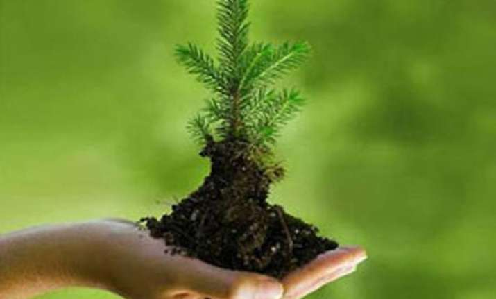world environment day india s green mission caught in funds