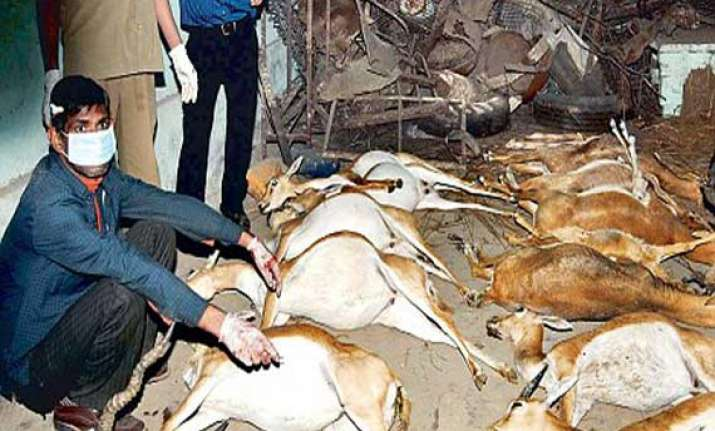 16 black bucks die in kota zoo in rajasthan