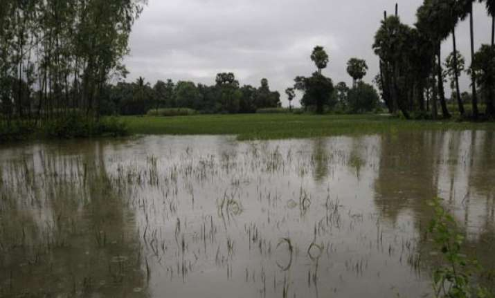 17 dead as rains batter andhra pradesh
