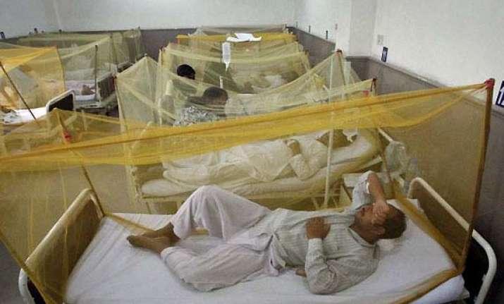 39 more dengue cases in delhi