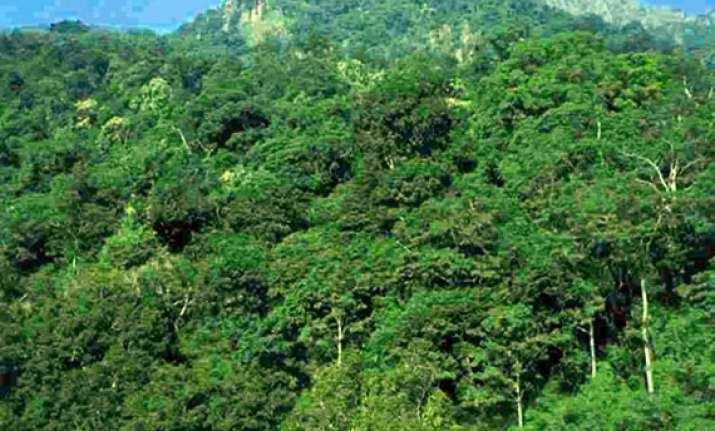 25 check dams built in jharkhand forest areas