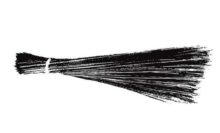 aap officially launches broom as party symbol