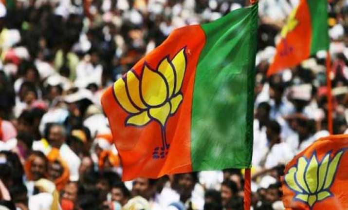 bjp could get 206 218 seats says opinion poll