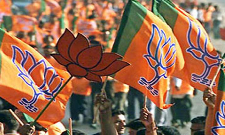 bjp pips congress others in lok sabha poll expenses