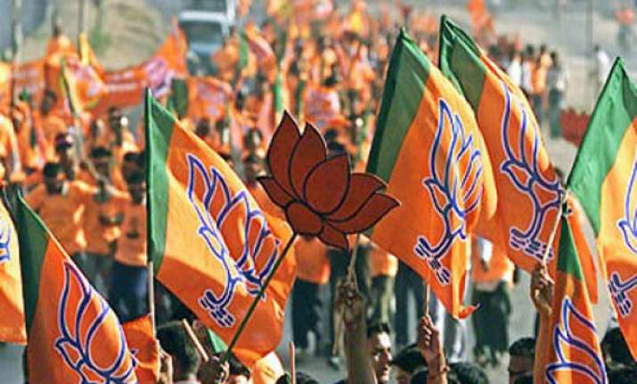 modi storms to power bjp gets highest ever tally in ls